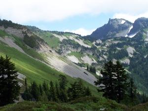 Mt. Rainier 2010 068