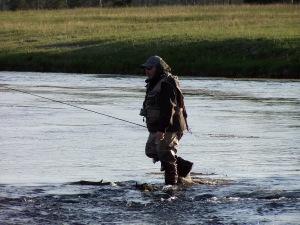 Yellowstone 2009 195