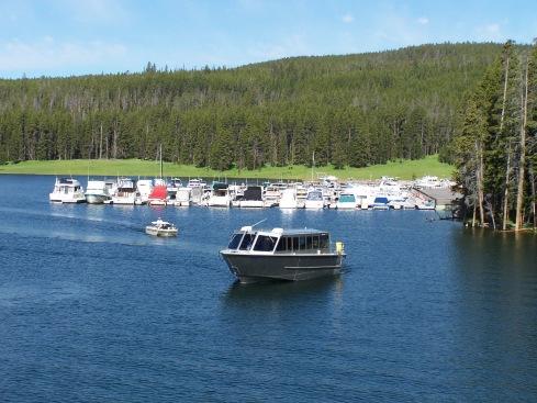 Yellowstone 2009 300